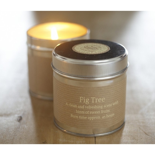 fig tree tin